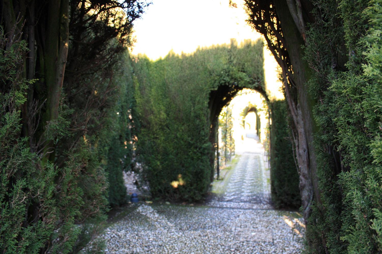 Jardines cipreses generalife alhambra for Jardines generalife